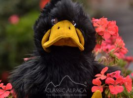 PREMIUM Baby Alpaca Fur - Duck Ornament 14""